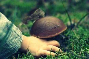 dziecko na grzybach
