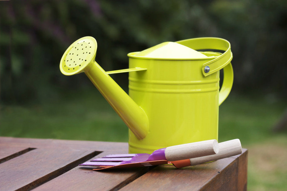 watering can still life