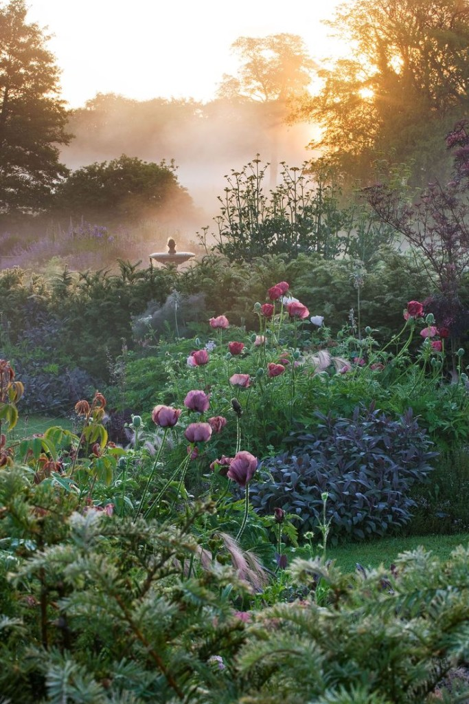 NARBOROUGH HALL, NORFOLK: DAWN LIGHT