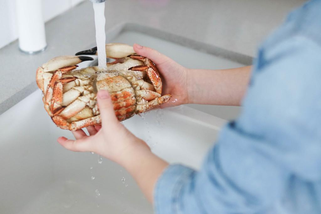 mycie kraba
