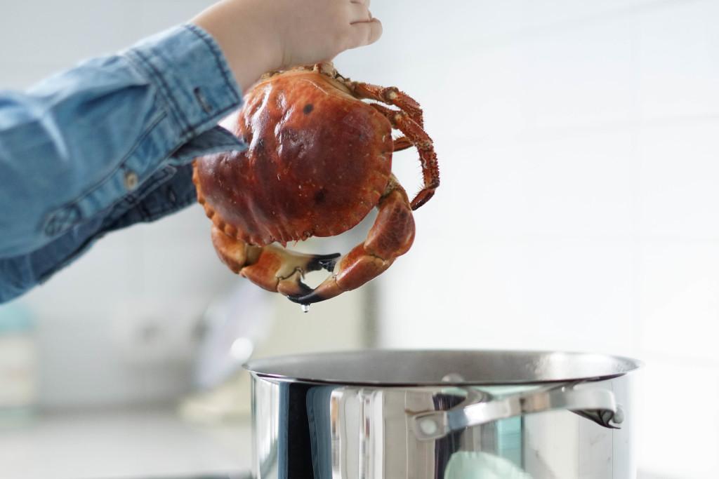 gotowanie kraba