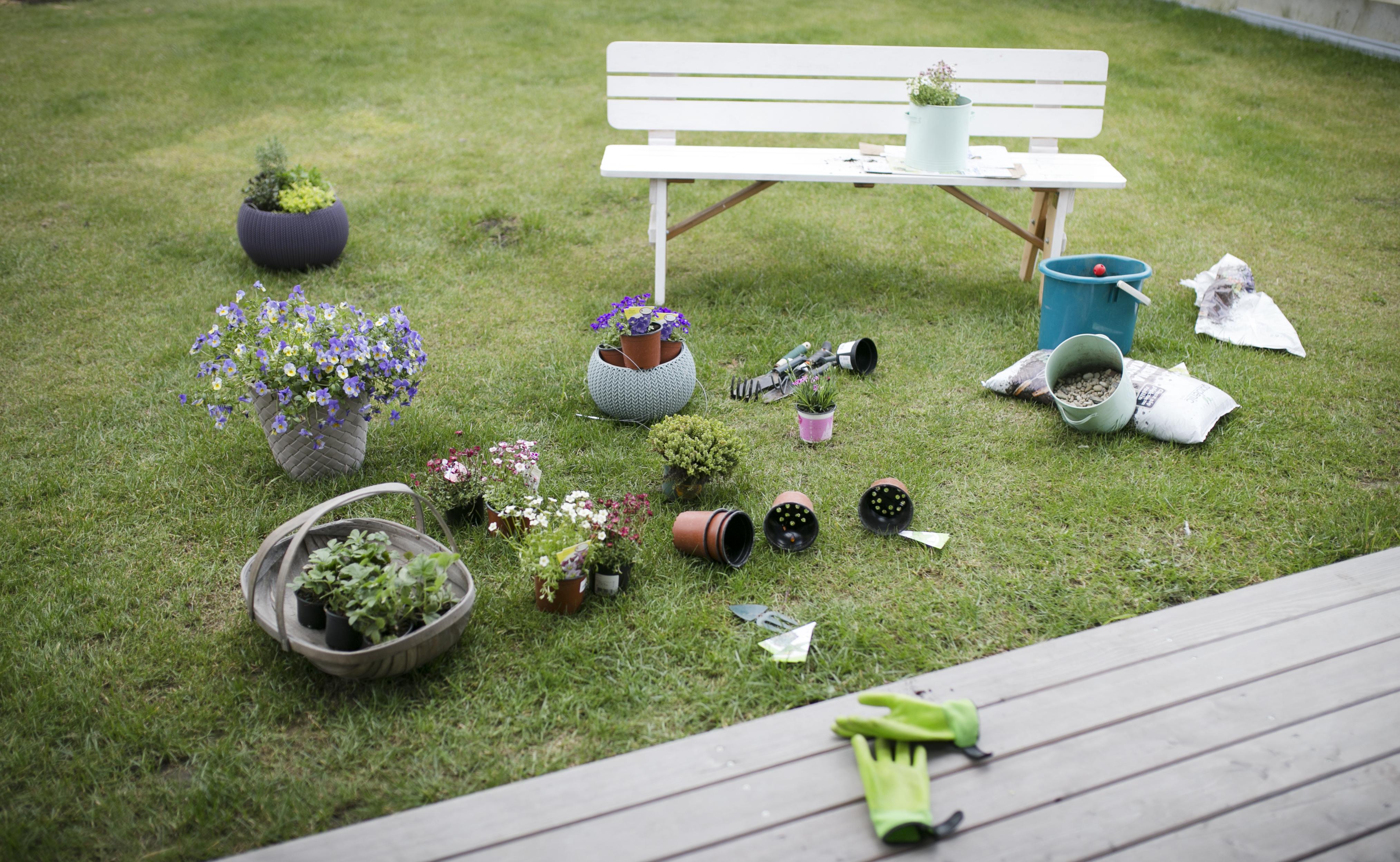 taras, ogród, kwiaty na tarasie