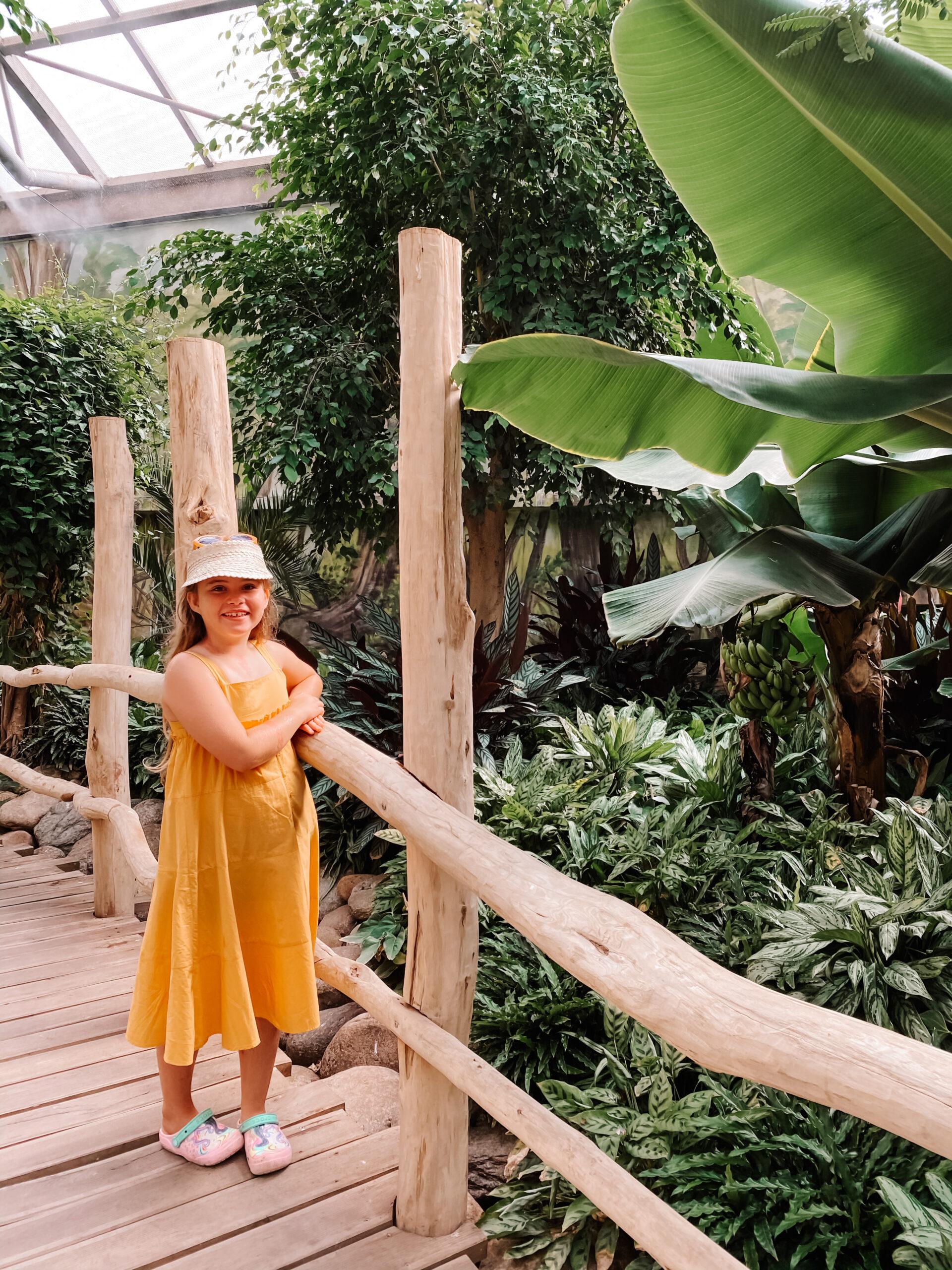 Zoo Safari Dvur Kralove